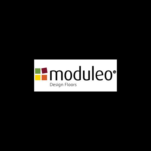 Moduleo Logo Example